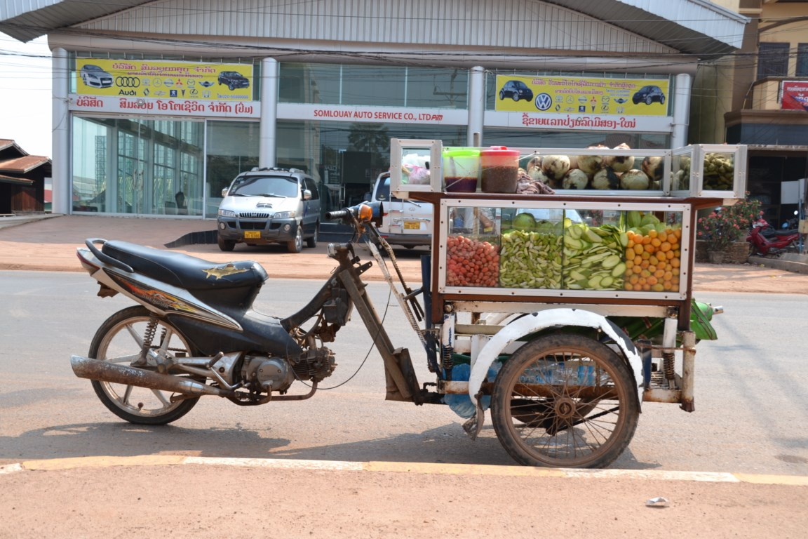 Fruits frais et marinés, Vientiane, Laos (Copier)