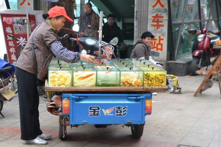 Légumes saumurés, Nanning, Chine (Copier)